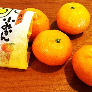 桜島!火山の恵みにありがとう!桜島小みかんグラッセ