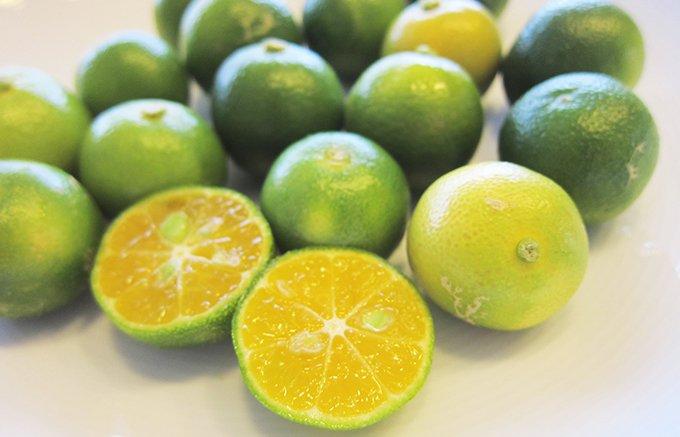 4種類の味が楽しめる!とっても奥が深い「シークヮーサーの果汁ジャム」