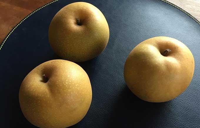 【秋の味覚】梨の王国鳥取県から新ブランド、その名も「新甘泉」(しんかんせん)