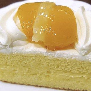 長崎だけで大人気!シースクリームの謎に迫る!