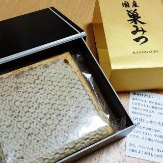 ハチの巣を丸ごと食べる!希少な日本のニホンミツバチの巣蜜 かの蜂の「巣みつ」