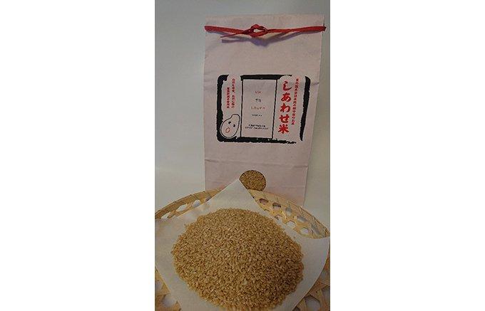 宇佐の大地が育む、農薬・肥料不使用『しあわせ米のあまざけ』