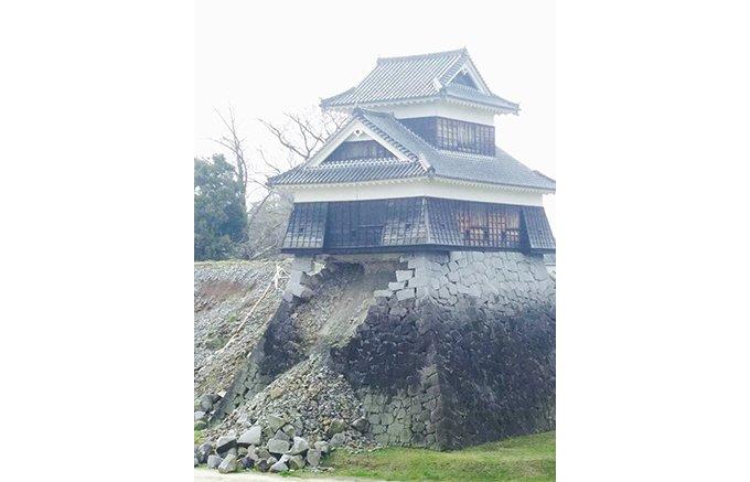 熊本城の復興の願いを込めたブルーチーズ「Nipponia Blue 飯田丸」