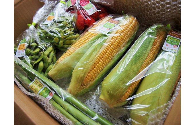 シェフも絶賛!!新潟村上のエコファーマー桃川農園の「野菜セット」