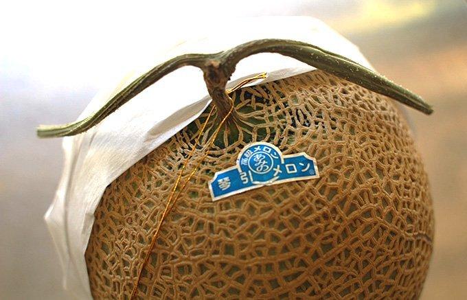 今が旬!夏の手土産におすすめ!産地直送がうれしいフルーツギフト