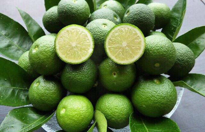 今年も幻の柑橘の季節がやってきた!宮崎県のローカル柑橘「平兵衛酢(へべす)」