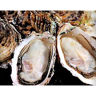 1年中美味しい牡蠣料理を提供できる!佐藤養殖場の清浄「的矢かき」