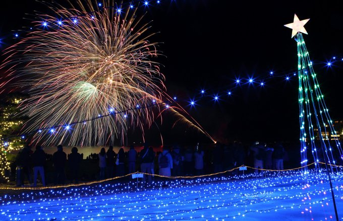 【和歌山・白浜】「紀州南高梅」新年を告げる花火は酸味の効いた華やかな色使い