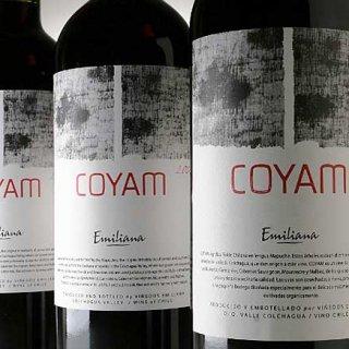 あなたのプリンスのお口にもきっと合う!チリワイン「Coyam 2011」