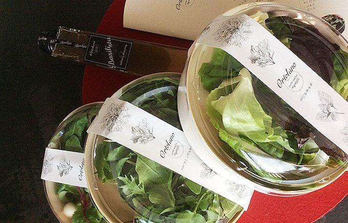 サラダブーム到来!食べてキレイに健康に!野菜不足におすすめ絶品サラダ