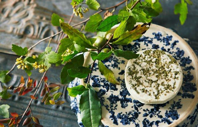 既成概念を超越するクリーミーで濃厚な植物性発酵チーズCHOICE FROMAGE