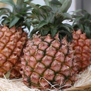 「柔らかく」て「甘い」沖縄県で育ったピーチパイン