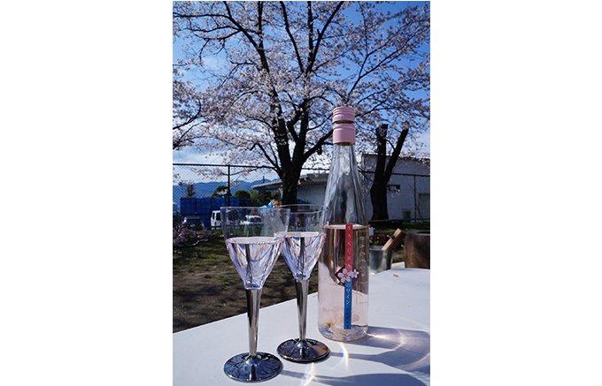 季節限定 グラスに桜が舞う「ロリアン さくらのワイン」
