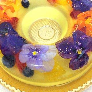 女子会ウケ間違いなし!一足先にテーブルに春を届ける花のババロア『havaro』