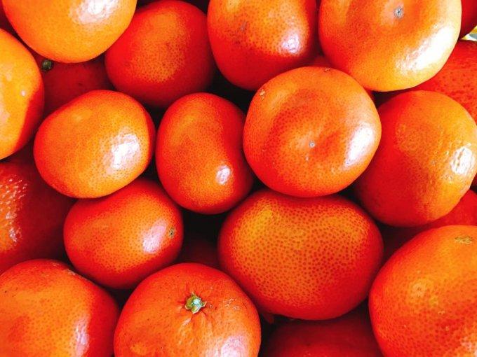 循環農法で生まれる奇跡のみかんジュース!熊本『にしだ果樹園』の「○搾り」
