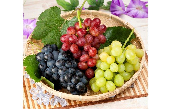 極旨な果物を惜しげもなく!果物農園の果実100%濃厚まる搾り自家製ジュース