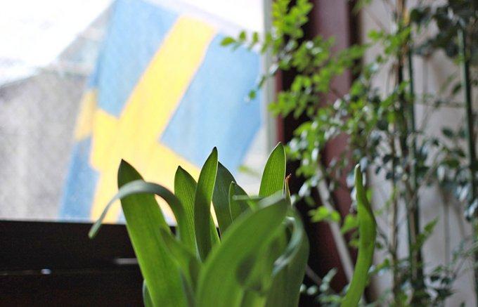 スウェーデンの国民的スイーツ「セムラ」。春を呼ぶ可愛いお菓子