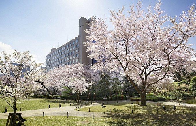 桜の季節といえば高輪!プリンスホテルのチョコもさくら色