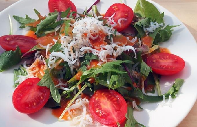 美味しいトマトが食べたい人必見!トマトの無限の可能性を秘めた5つ