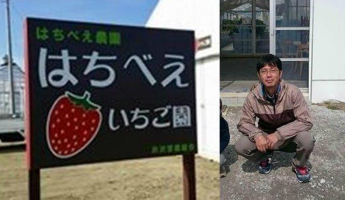 いちご農家さんで摘みたていちごをいただく贅沢・千葉県いすみ市『はちべえいちご園』