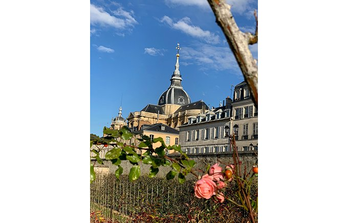 フランス宮廷文化を彷彿させる二ナス マリーアントワネット ローズ ドラジェ