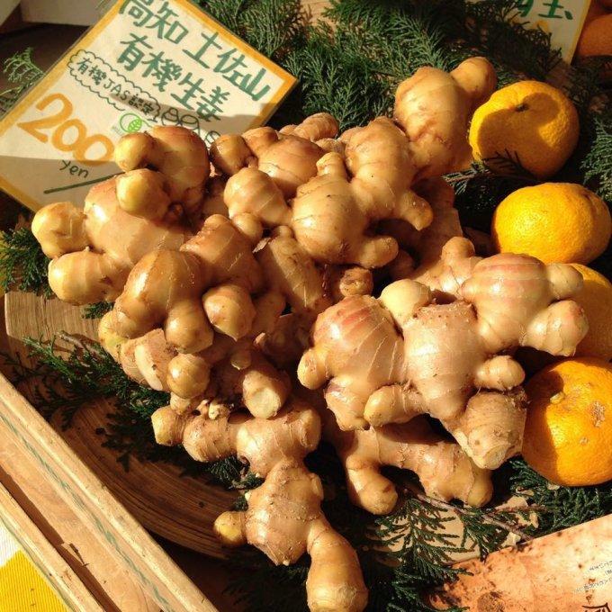 希少な国産有機生姜をたっぷりと使用した本格派「土佐山ジンジャーエール」