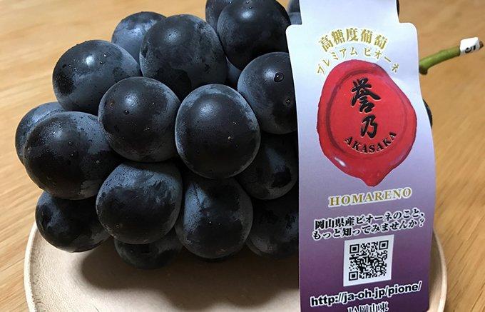 岡山生まれの種なしのブドウ!糖度も16度を超えたプレミアムなピオーネ「誉乃」