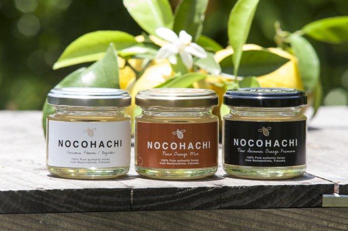 花と柑橘の島、福岡・能古島産のさっぱり風味の絶品はちみつ「NOCO HACHI」