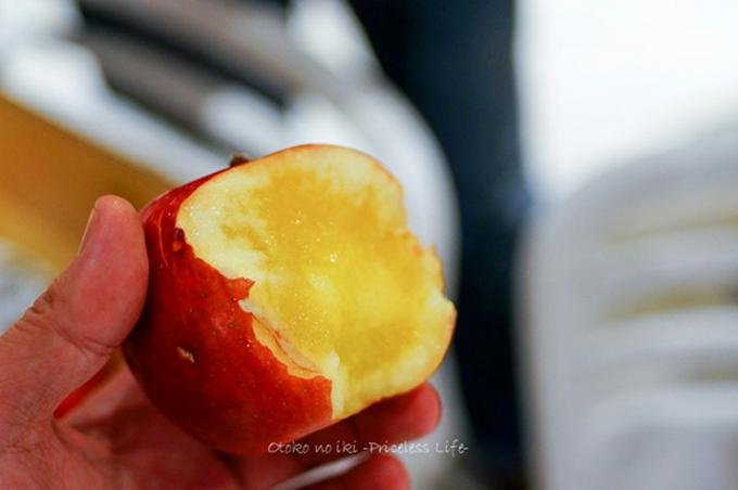 傷つくことで甘味を増す人間みたいな『雹kissりんご』