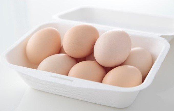 """""""不老不死の鳥""""の卵!?希少な烏骨鶏の有精卵"""