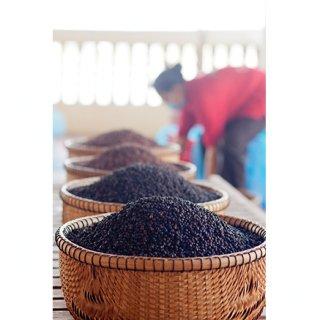 世界中の名シェフも絶賛!辛さと上品な甘みを味わう「黒胡椒」