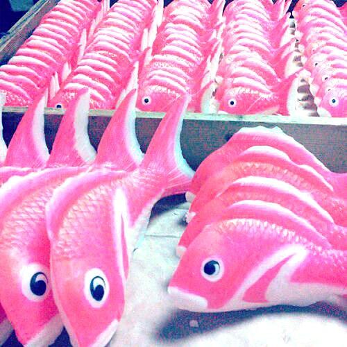 おめでたい席でセンスが光る!唐津の伝統スイーツは甘~い鯛の金華糖
