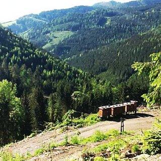 あの映画の舞台オーストリアの大自然がはぐくんだ癒しのはちみつ《モミの木はちみつ》