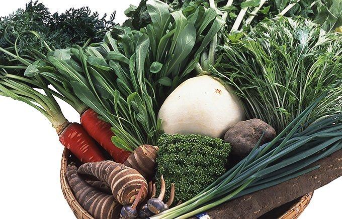 味も色も個性派揃い!伝統野菜&産直野菜のヘルシーギフト
