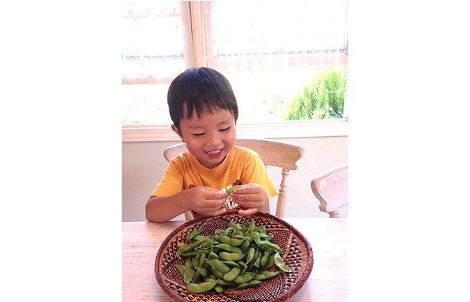 今が旬!新潟のブランド枝豆「くろさき茶豆」