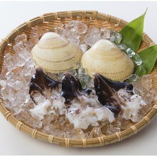 大きさが普通の「とり貝」の約2倍!春の訪れを感じさせる石川県の名物「能登とり貝」
