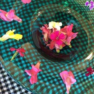 食用花 エディブルフラワー