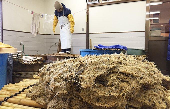 世界農業遺産の石川県宝達山に伝わる真っ白な葛スイーツ
