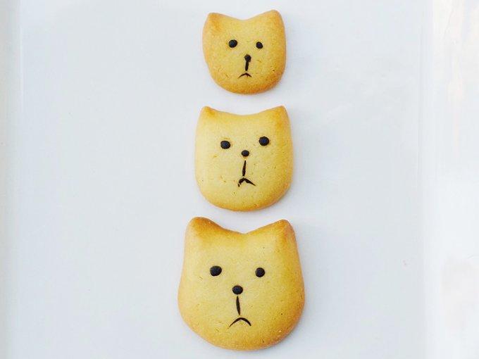 京都発 三毛猫という意味の焼き菓子屋「キャリコ」