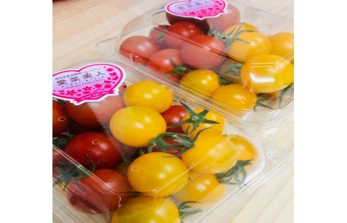 「野菜嫌いを解決したい」そんな想いが詰まった糖度7以上のフルーツトマト