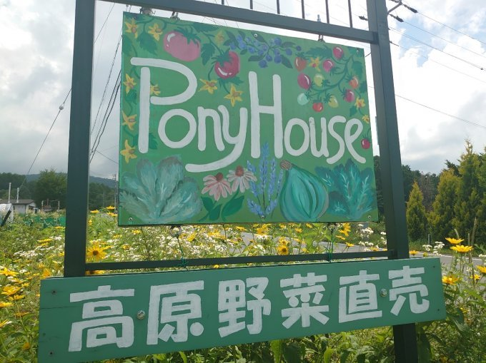 蓼科高原のオーガニック野菜で夏の暑さを吹き飛ばそう!