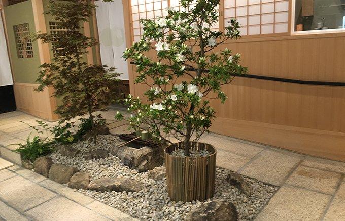 予約困難で有名な日本料理店「くろぎ」の新店舗、くろぎ茶々の和菓子「常葉・白練」